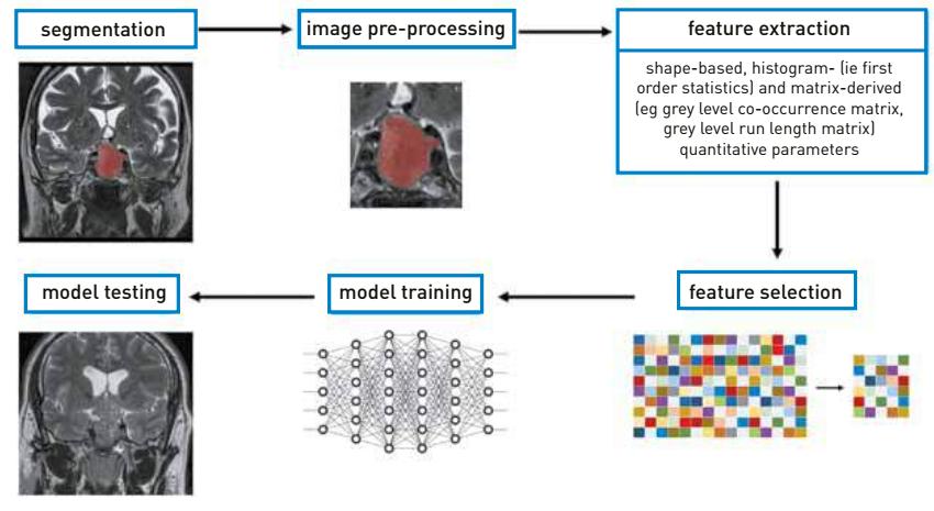 Mesterséges intelligencia alkalmazásai a képalkotásban