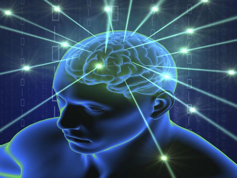 Hogyan hat az ultrahang-vizsgálat az embrió idegsejteire?
