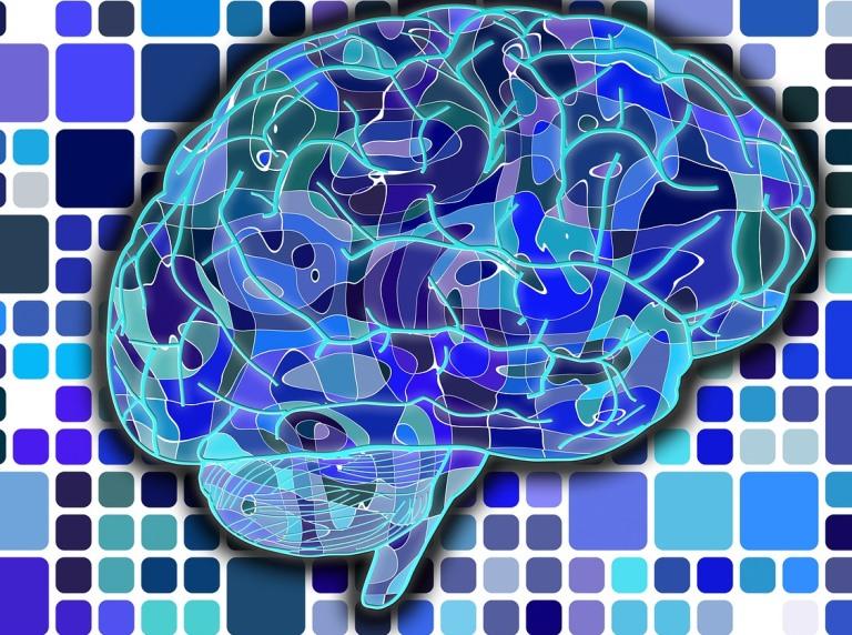 Új képalkotó eljárással mérhető az agy magnetittartalma