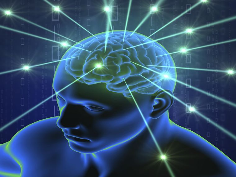 Mesterséges intelligenciák fedik fel agyunk valódi korát